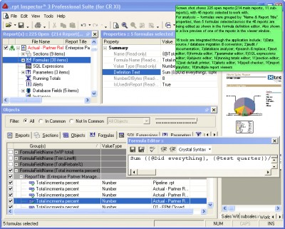 .rpt Inspector Professional Suite (for CR 9) 3.02 screenshot