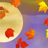 3D Falling Autumn Leaves 1.0 screenshot