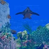3D Sea Turtle Paradise 1.0 screenshot