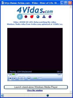 4vidas 2.4.1 screenshot