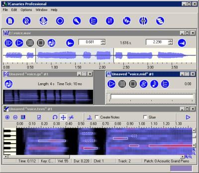 7Canaries Professional 1.00 screenshot