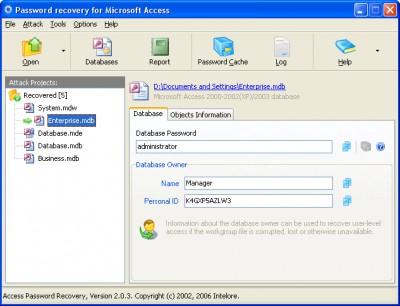 Access Password Recovery Pro 2.0.4 screenshot