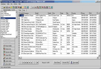 Accuracer Database System VCL 9.00 screenshot