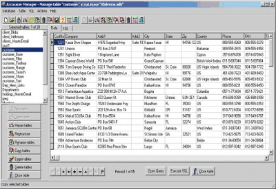 Accuracer Database System 4.03 screenshot