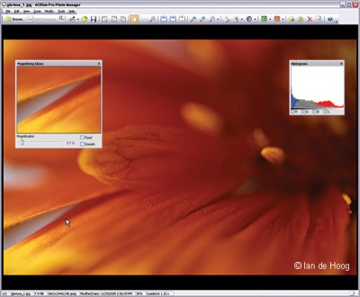 ACDSee Pro Photo Manager  screenshot