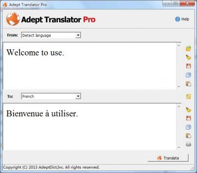 Adept Translator  Pro 5.40 screenshot