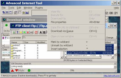 Advanced Internet Tool 2.2.2 screenshot