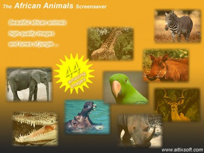 African Animals Screensaver 1.7 screenshot