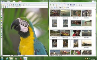 Ai Picture Explorer 8.9 screenshot
