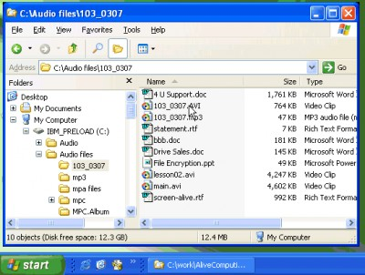 Alive File Encryption 1.3.0 screenshot