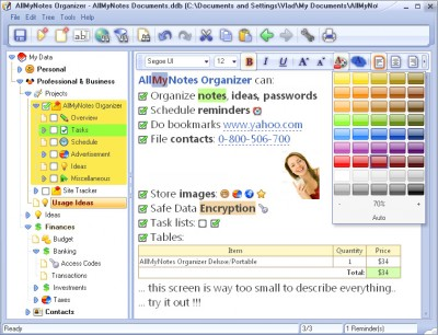 AllMyNotes Organizer Deluxe Edition 3.31 screenshot