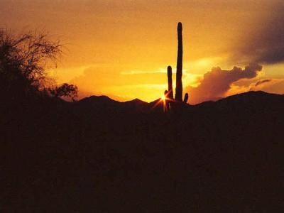American Landscapes Sampler 2.0 screenshot