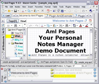 Aml Pages Portable Edition 9.81 screenshot