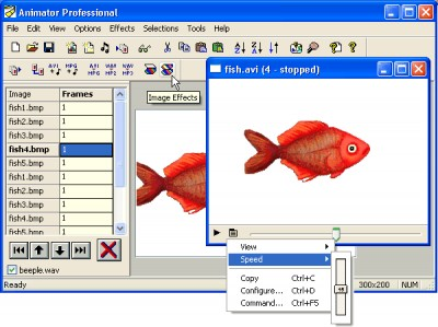 Antechinus Animator Professional 8.2 screenshot