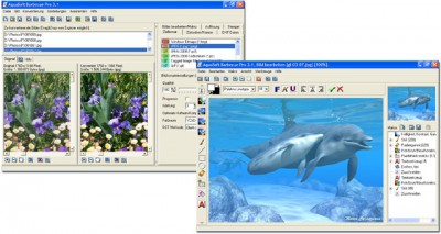 AquaSoft Barbecue 3.2.05 screenshot