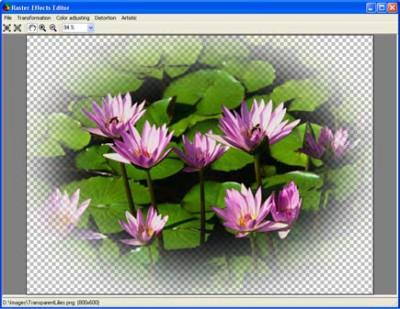 Aurigma Graphics Processor 1.9 screenshot