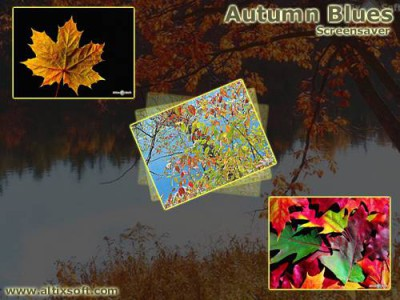 Autumn Blues Screensaver 1.4a screenshot