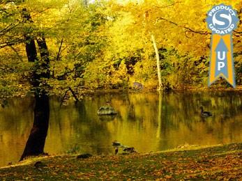 Autumn 5.07 screenshot