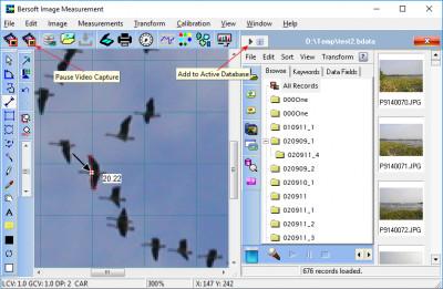 Bersoft Image Measurement 9.0 screenshot