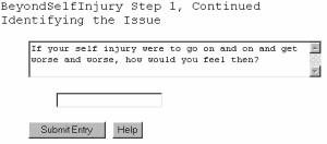 Beyond Self Injury, Self Help Software 5.10.21 screenshot