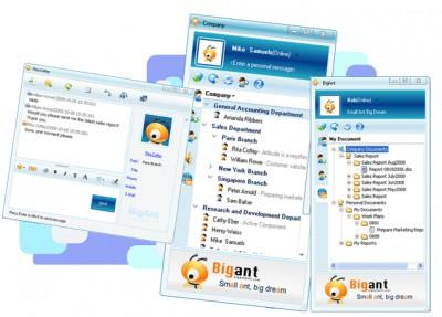 BigAnt IM Server 2.92 screenshot