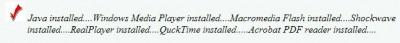 BigSite Plugin Checker 1.1 screenshot