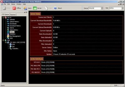 BlackMoon FTP Server 4.0.0.2010 screenshot