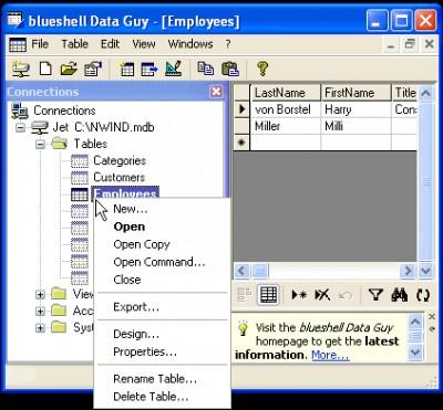 blueshell Data Guy Professional 2.03.0001 screenshot
