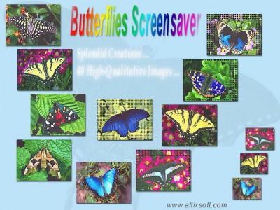 Butterflies Screensaver 1.3 screenshot