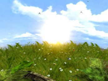 Butterflies 5.07 screenshot