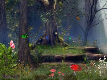 Butterfly Woods 5.07 screenshot