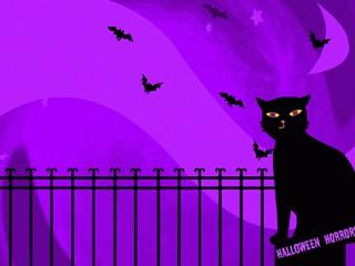 Cat and Bats Halloween Wallpaper 2.0 screenshot