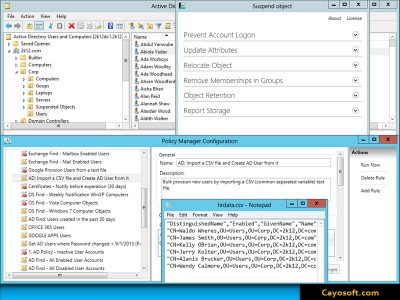 Cayo Administrator 1.1 screenshot