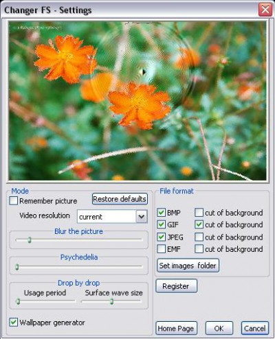 Changer FS 1.0.0.6 screenshot