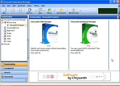 Chrysanth Download Manager 1.6 screenshot