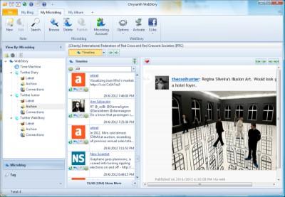 Chrysanth WebStory 5.4 screenshot