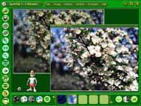 Color Pilot Junior 1.00 screenshot