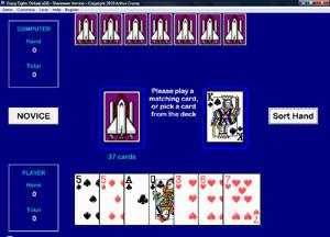 Crazy Eights Deluxe 3.1 screenshot