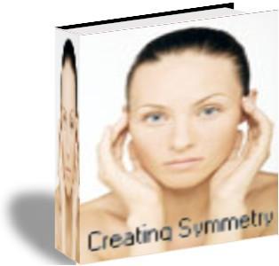 Creating Symmetry 5.6 screenshot