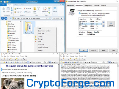 CryptoForge 5.5.0 screenshot