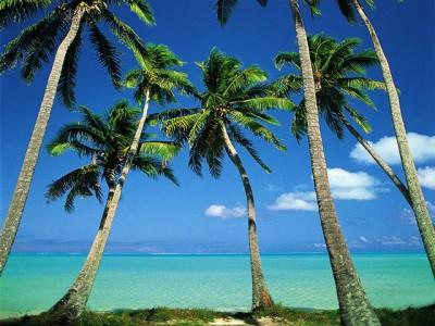 dArt Tropical Islands vol.1 1.02.6 screenshot