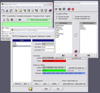 DeepCoder 1.0 screenshot