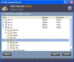 Disk CleanUp Wizard 2.1.0.1 screenshot
