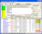 Domain Name Pro 5.33 screenshot