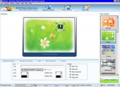 DVD Photo Slideshow Professional 8.06 screenshot
