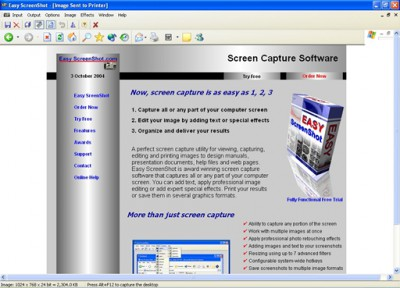 Easy Screenshot 2.0 screenshot