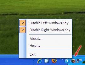 Easy WinKey Blocker 1.0 screenshot