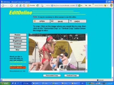 EditOnline 1.00 screenshot