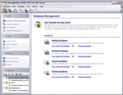EMS SQL Management Studio for SQL Server 1.2 screenshot