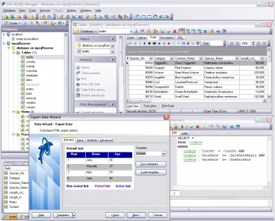 EMS SQL Manager 2005 Lite for MySQL 3.7 screenshot